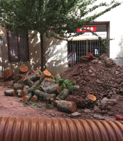 primo-de-rivera-restos-tala