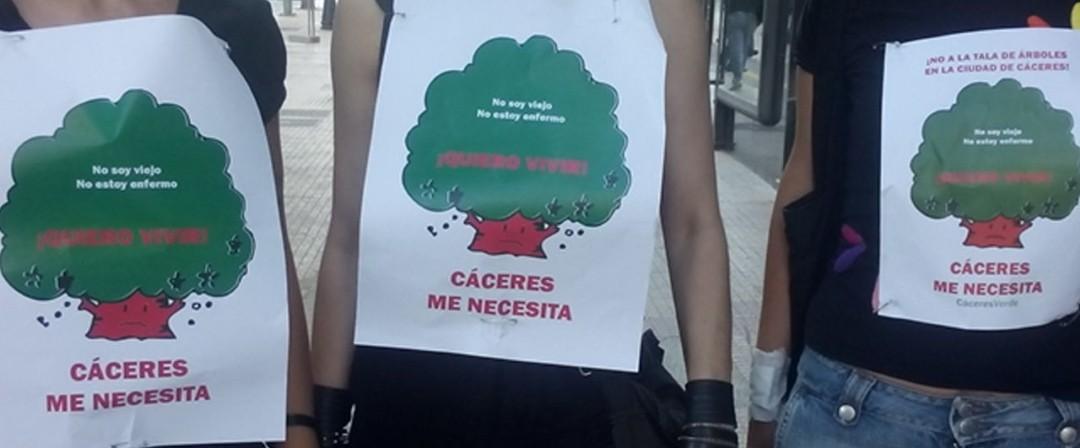 Exigimos la inmediata paralización de talas en Primo de Rivera