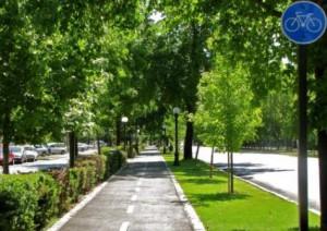 caceresverde-obra-parking-primo-de-rivera-vegetacion