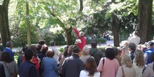 caceresverde-paseo-arboles-canovas
