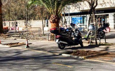 Alarma en el Paseo de las Acacias