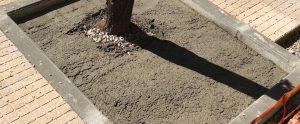 caceresverde-alcorque-cemento