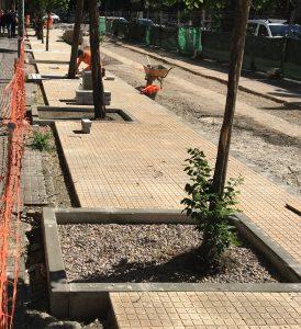 caceresverde-alcorque-cemento-proceso