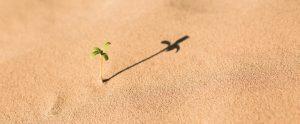 caceresverde-medio-ambiente